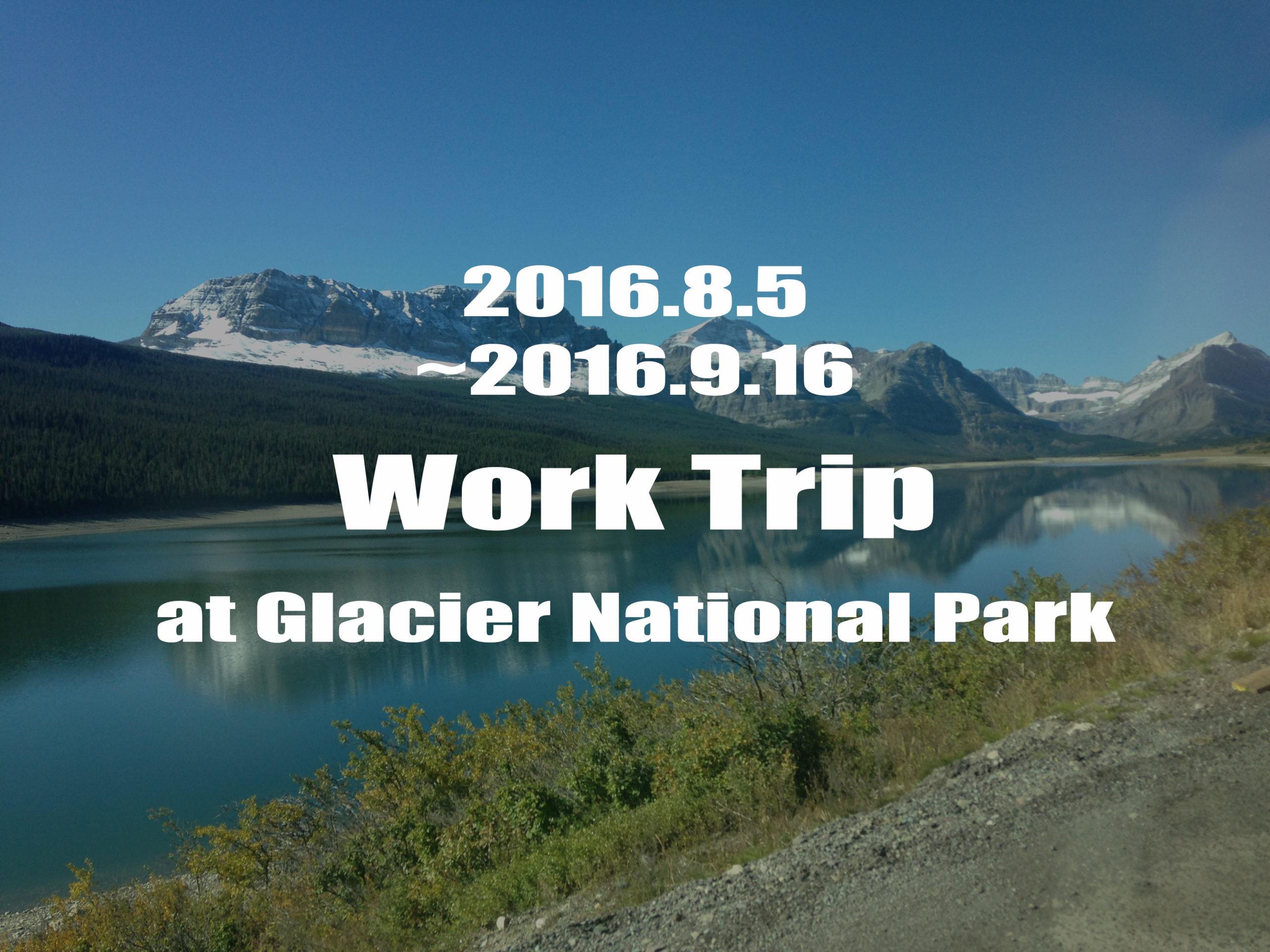 グレイシャー国立公園への行き方
