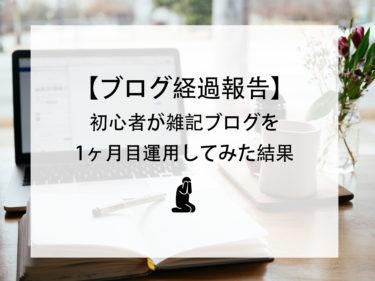 【ブログ経過報告】初心者の雑記ブログ1ヶ月目のpv、感想